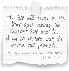 """""""My life will never be the same after visiting the Concord Zoe and Co. I am so pleased with the service and products..."""" To see more raving reviews, click here!"""
